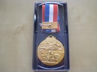 20101107_medal
